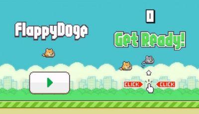 Flappy bird igre